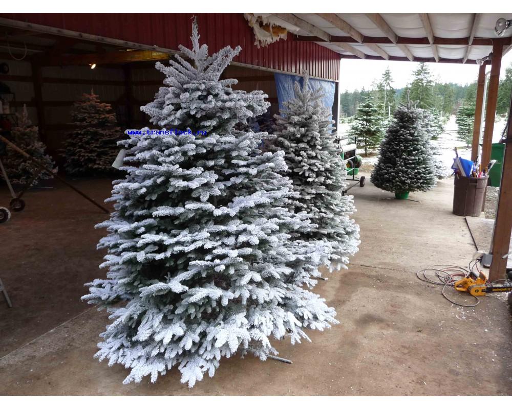 рождественская елка с флоком