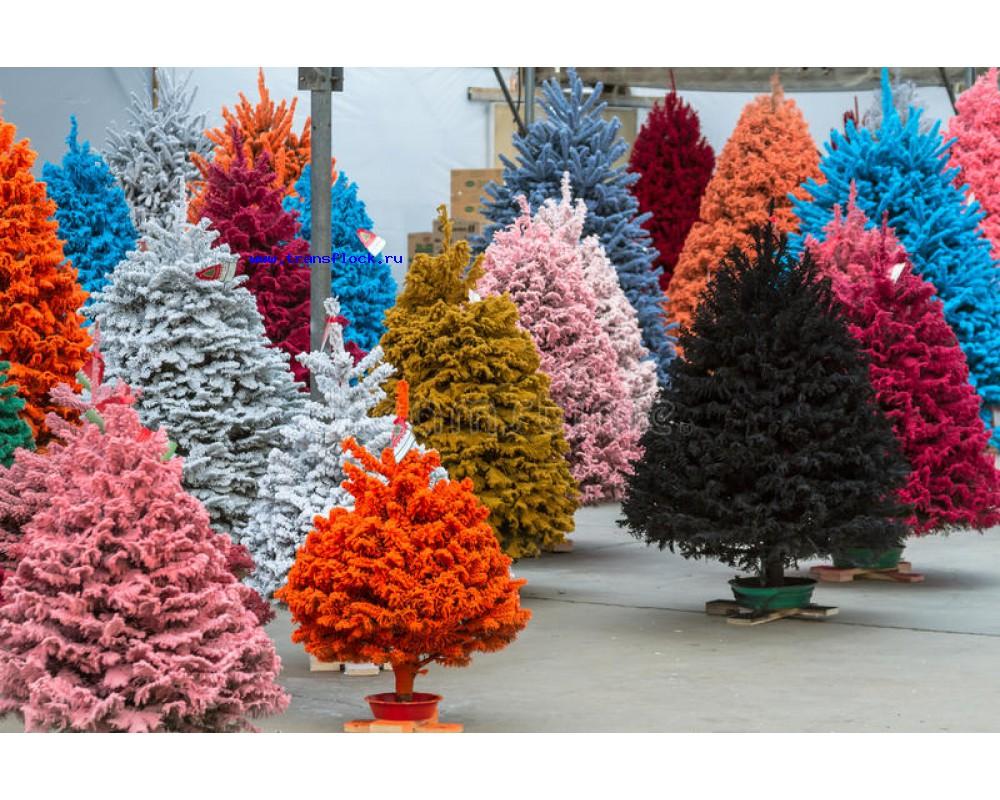 Покраска елок